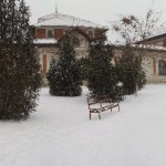 snowy school yard-1