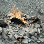 Andreiasu de Jos - Focul Viu 17
