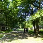 Muzeul Satului - Petresti 08