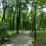 Parcul Copou 01